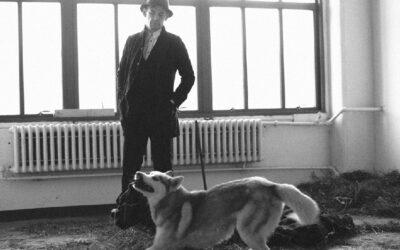Fra Joseph Beuys' coyote til digterens heste